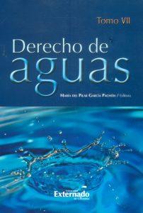 Derecho de Aguas. Tomo VII